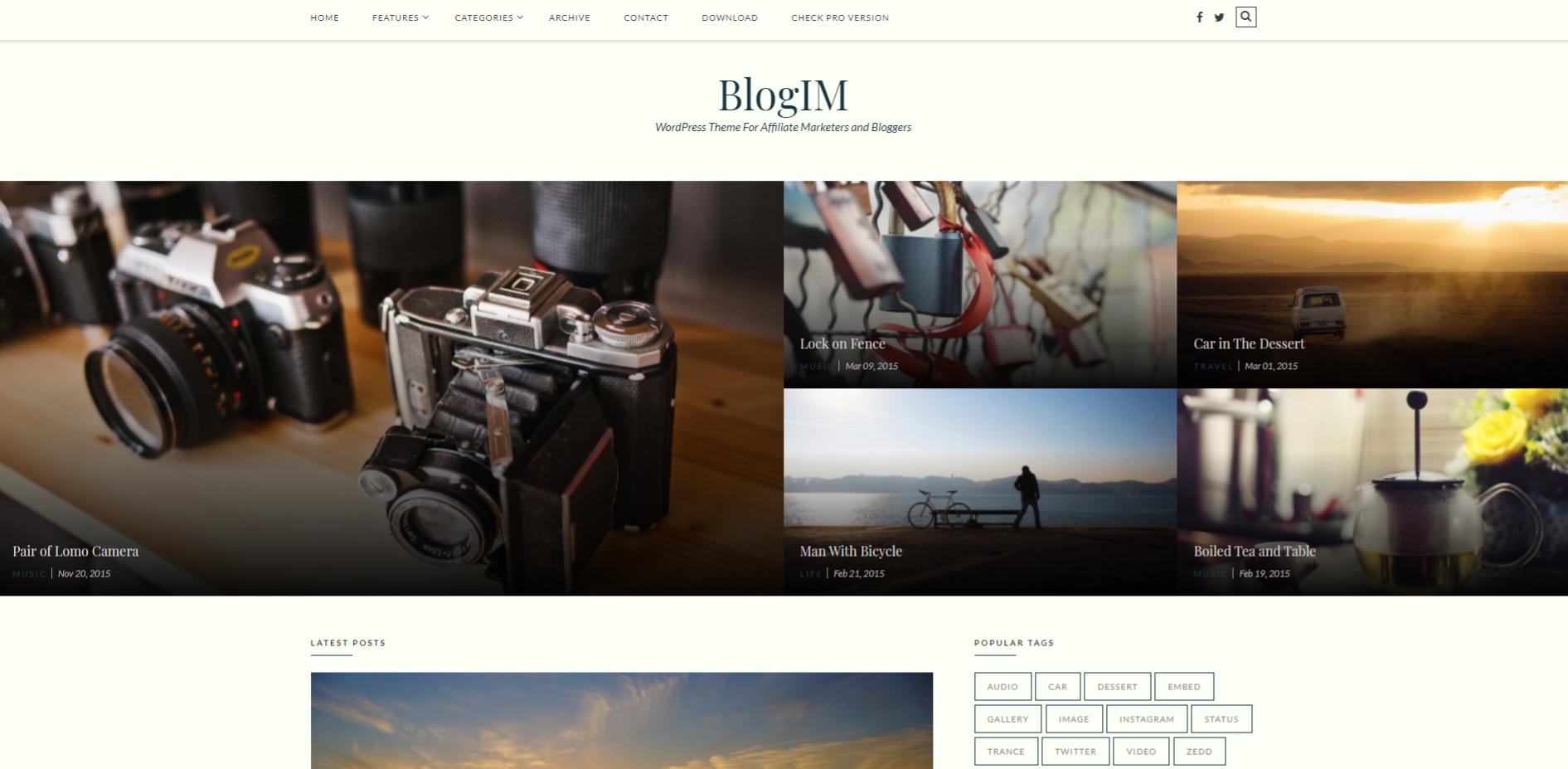 Blogim WordPress Theme